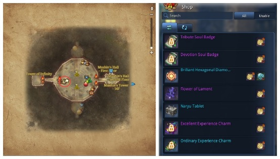 Blade&Soul Guide:How To Acquire Tribute Token To Exchange